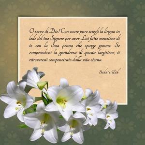 <p>O servo di Dio! Con cuore puro sciogli la lingua in lode del tuo Signore per aver Lui fatto menzione di te con la Sua penna che sparge gemme. Se comprendessi la grandezza di questa largizione, ti ritroveresti compenetrato dalla vita eterna.</p>  <p><br /> Bah&aacute;&rsquo;u&rsquo;ll&aacute;h</p>