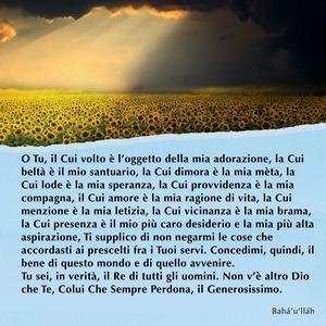 <p>O Tu, il Cui volto &egrave; l&rsquo;oggetto della mia adorazione, la Cui belt&agrave; &egrave; il mio santuario, la Cui dimora &egrave; la mia m&egrave;ta, la Cui lode &egrave; la mia speranza, la Cui provvidenza &egrave; la mia compagna, il Cui amore &egrave; la mia ragione di vita, la Cui menzione &egrave; la mia letizia, la Cui vicinanza &egrave; la mia brama, la Cui presenza &egrave; il mio pi&ugrave; caro desiderio e la mia pi&ugrave; alta aspirazione, Ti supplico di non negarmi le cose che accordasti ai prescelti fra i Tuoi servi. Concedimi, quindi, il bene di questo mondo e di quello avvenire.<br /> Tu sei, in verit&agrave;, il Re di tutti gli uomini. Non v&rsquo;&egrave; altro Dio che Te, Colui Che Sempre Perdona, il Generosissimo.</p>  <p><br /> Bah&aacute;&rsquo;u&rsquo;ll&aacute;h</p>