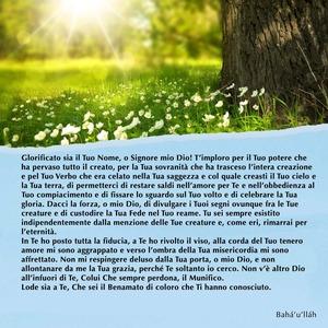 <p>Glorificato sia il Tuo Nome, o Signore mio Dio! T&rsquo;imploro per il Tuo potere che ha pervaso tutto il creato, per la Tua sovranit&agrave; che ha trasceso l&rsquo;intera creazione e pel Tuo Verbo che era celato nella Tua saggezza e col quale creasti il Tuo cielo e la Tua terra, di permetterci di restare saldi nell&rsquo;amore per Te e nell&rsquo;obbedienza al Tuo compiacimento e di fissare lo sguardo sul Tuo volto e di celebrare la Tua gloria. Dacci la forza, o mio Dio, di divulgare i Tuoi segni ovunque fra le Tue creature e di custodire la Tua Fede nel Tuo reame. Tu sei sempre esistito indipendentemente dalla menzione delle Tue creature e, come eri, rimarrai per l&rsquo;eternit&agrave;.<br /> In Te ho posto tutta la fiducia, a Te ho rivolto il viso, alla corda del Tuo tenero amore mi sono aggrappato e verso l&rsquo;ombra della Tua misericordia mi sono affrettato. Non mi respingere deluso dalla Tua porta, o mio Dio, e non allontanare da me la Tua grazia, perch&eacute; Te soltanto io cerco. Non v&rsquo;&egrave; altro Dio all&rsquo;infuori di Te, Colui Che sempre perdona, il Munifico.<br /> Lode sia a Te, Che sei il Benamato di coloro che Ti hanno conosciuto.</p>  <p><br /> Bah&aacute;&rsquo;u&rsquo;ll&aacute;h</p>